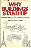 Why Buildings Stand Up: The Strength of Architecture (0393014010) by Mario Salvadori