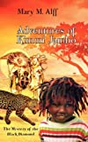 Adventures of Kimmi Jambo: The Mystery of the Black Diamond