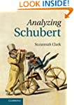 Analyzing Schubert