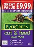 #6: EverGreen Cut & Feed 300 sq m Lawn Food Bag