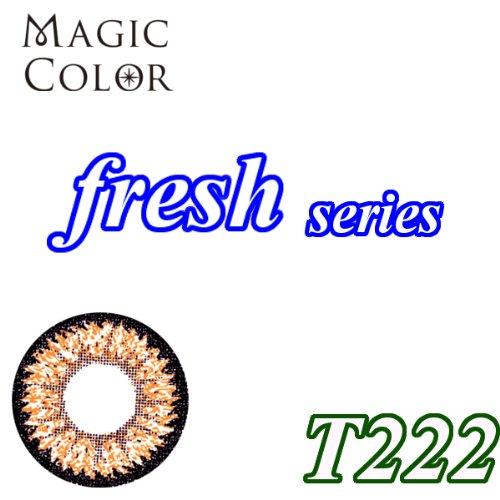 MAGICCOLOR (マジックカラー) fresh T222 度なし 14.5mm 1ヵ月使用 2枚入り