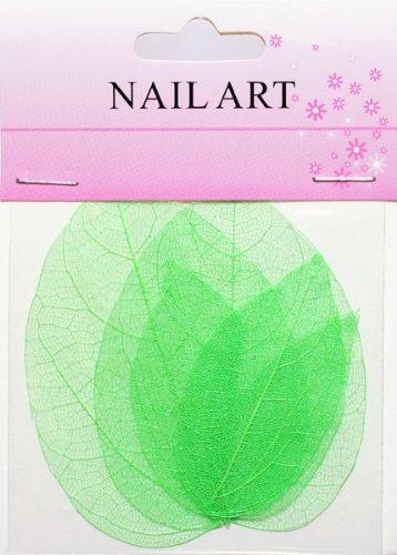 ドライリーフ グリーン #3 ネイルアートの模様付け用 押し葉 押し花