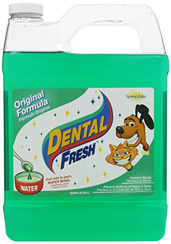 Synergy Labs 369043 Dental Fresh For Dog And Cat, 1-Gallon front-1006440