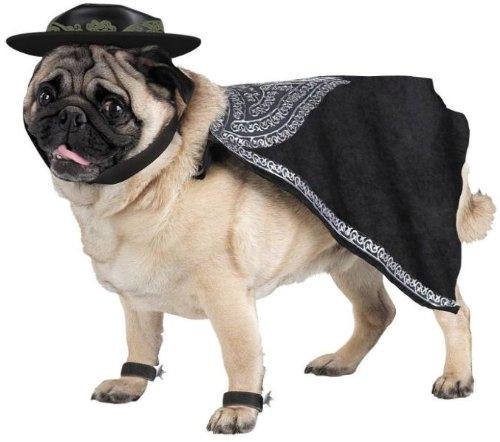 WMU Zorro Pet