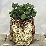 Nature's Garden Owl Planter