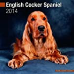 English Cocker Spaniel 2014 (Calendar...