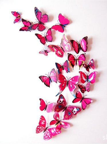 Amaonm® 60 Pcs 5 Packages Beautiful 3d Butterfly Wall Decals Removable Diy Home Decorations Art Decor Wall Stickers & Murals for Babys Bedroom Tv Background Living Room (Rose Red)