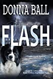 Download Flash (Dogleg Island Mystery Book 1)