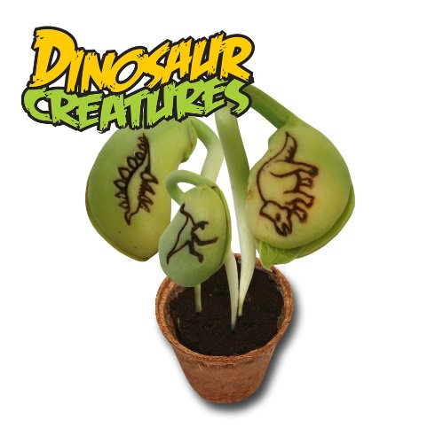 Magic Bean Wishes Dinosaur Creatures Planter Kit