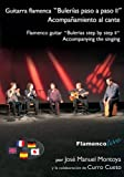 Flamenco Guitar Bulerias Step by Step Vol. 2 (Spanish Edition)