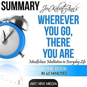 Summary | Jon Kabat-Zinn's Wherever You Go, There You Are Audiobook