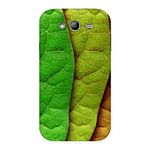 Cute Pattern Leaf Back Case Cover for Galaxy Grand