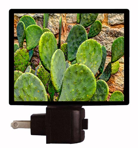 Botanical And Floral Night Light - Prickly Pear Cactus - Southwest front-182355