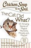 img - for Chicken Soup for the Soul: The Cat Did What?: 101 Amazing Stories of Magical Moments, Miracles and... Mischief book / textbook / text book
