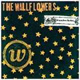 Bringing Down the Horse ~ The Wallflowers