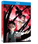 Fullmetal Alchemist - Brother P5 [Blu...