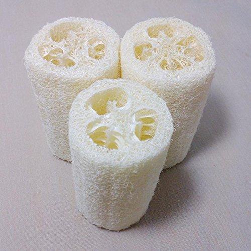 3pcs  (Soap And Sponge Costume)