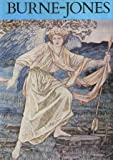 Burne-Jones, all colour paperback (0847802108) by Burne-Jones, Edward Coley