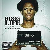 Hogg Life: The Beginning