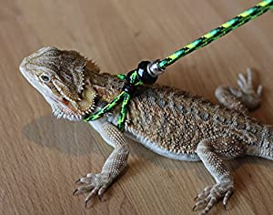 Adjustable Reptile LeashTM Harness Great for Reptiles or Small Pets ...