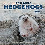 img - for Adorable Hedgehogs 2017: 16-Month Calendar September 2016 through December 2017 book / textbook / text book
