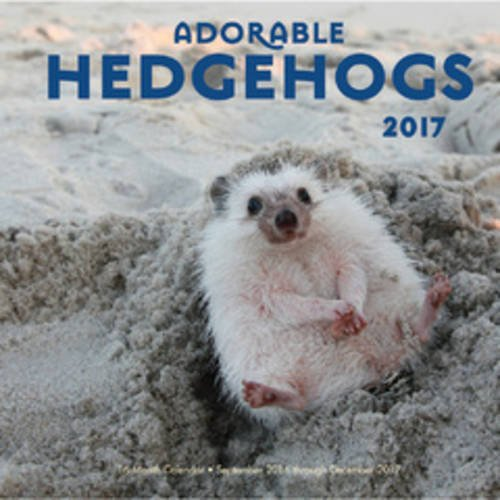 Adorable Hedgehogs 2017: 16-Month Calendar September 2016 through December 2017
