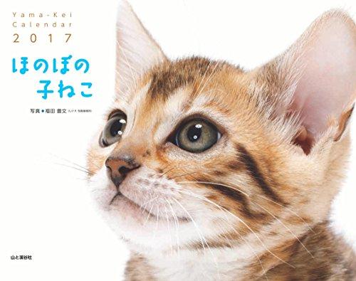 カレンダー2017 ほのぼの子ねこ (ヤマケイカレンダー2017)