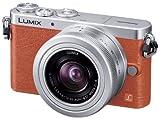 Panasonic デジタル一眼カメラ ルミックス GM1 レンズキット 標準ズームレンズ付属 オレンジ DMC-GM1K-D