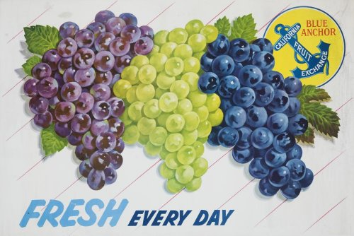 Fresh Every Day Poster Wall Mural - 42 Inches W X 28 Inches H - Peel And Stick Removable Graphic