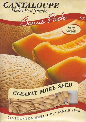 Hale's Best Jumbo Cantaloupe Seeds - 3 grams