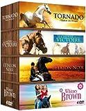 Coffret Cheval n°2 : Tornado l'étalon du désert + L'étalon noir + Whitney Brown + Le cheval de la victoire