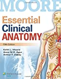 img - for Essential Clinical Anatomy book / textbook / text book