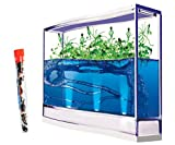 Live Giant Lighted Ecosystem Ant Habitat Shipped with 25 Live Ants Now (1 Tube of Ants)