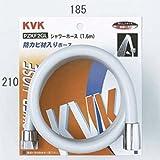 KVK シャワーホースホース PZKF2GL