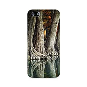 Mobicture Nature Abstract Premium Printed Case For Apple iPhone 5/5s