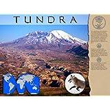 Tundra Biome Poster