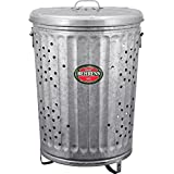 Behrens Manufacturing RB20 Galvanized Steel Rubbish Burner/Composter, 20 gal