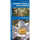 Georgia Trees & Wildflowers: A Folding Pocket Guide to Familiar Species (Pocket Naturalist Guide Series)