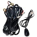 Arnés de cableado con doble base KAWELL- « 180W LED, Mazo de cables, interruptor y Kit de Soporte