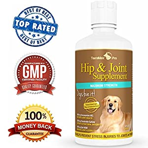 #1 Liquid Glucosamine for Dogs with Chondroitin MSM & Hyaluronic Acid - Safe & Natural Arthritis Pain Relief for Dogs! Extra Strength Dog Supplements for Joints and Hips - Liquid Joint Supplements for Dogs Absorb Better than Chewables or Powders - Strong
