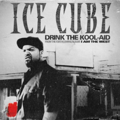 drink-the-kool-aid-explicit