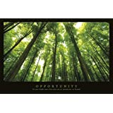 Empire 544926 Motivational - Opportunity Wald Forrests Motivations Poster Druck - Grösse 91.5 x 61 cm