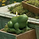 Novelty Garden Candle - Frog