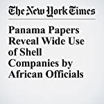 Panama Papers Reveal Wide Use of Shell Companies by African Officials | Scott Shane