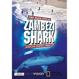 Zambezi Shark : Africa's Perfect Predator
