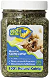 J and S Cosmic Catnip Cup 35g x 6 kaufen