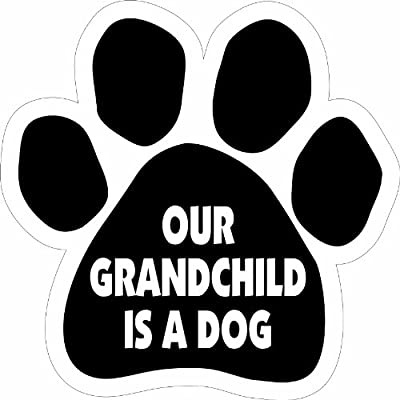 Imagine This Paw Car Magnet, Our Grandchild is a Dog, 5-1/2-Inch by 5-1/2-Inch