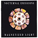 Magnetized Light