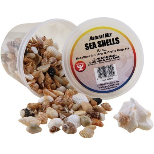 bucket-osea-shells-10-ounces-natural-by-hygloss