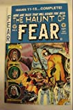 img - for Haunt of Fear Annual #3 book / textbook / text book